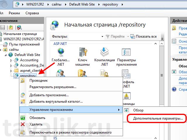 publikaciya_hranilischa_1c_8_na_iis_10